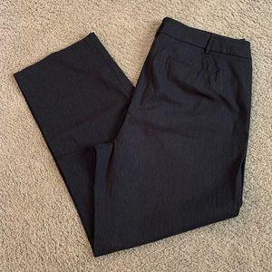 Lame Bryant Dress Pants, Size 18